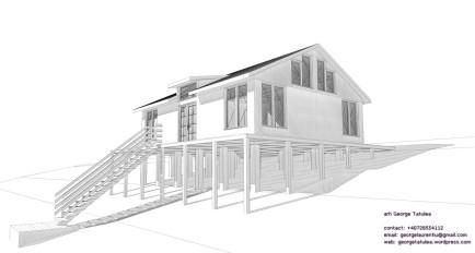 casa lemn 008